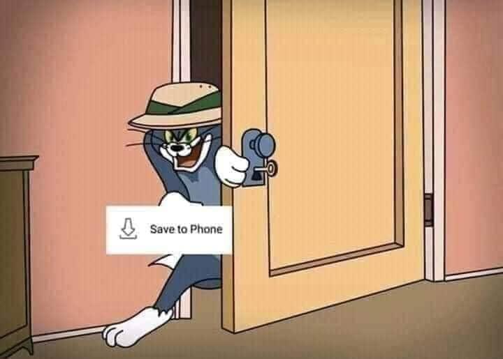 Mèo Tom lấy cắp lưu ảnh về điện thoại
