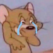 Chuột jerry khóc hết nước mắt