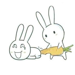 Thỏ bảy màu thông dít nhau - Tao thông dít mày