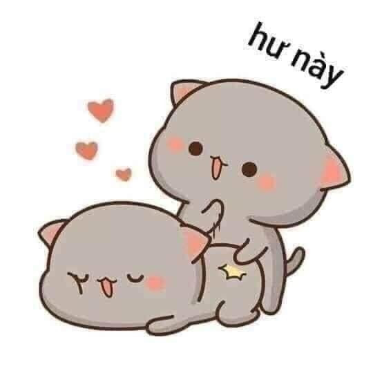 Hư này - 2 con mèo xxx nhau
