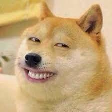Chó bựa giống mặt người cười nham nhở