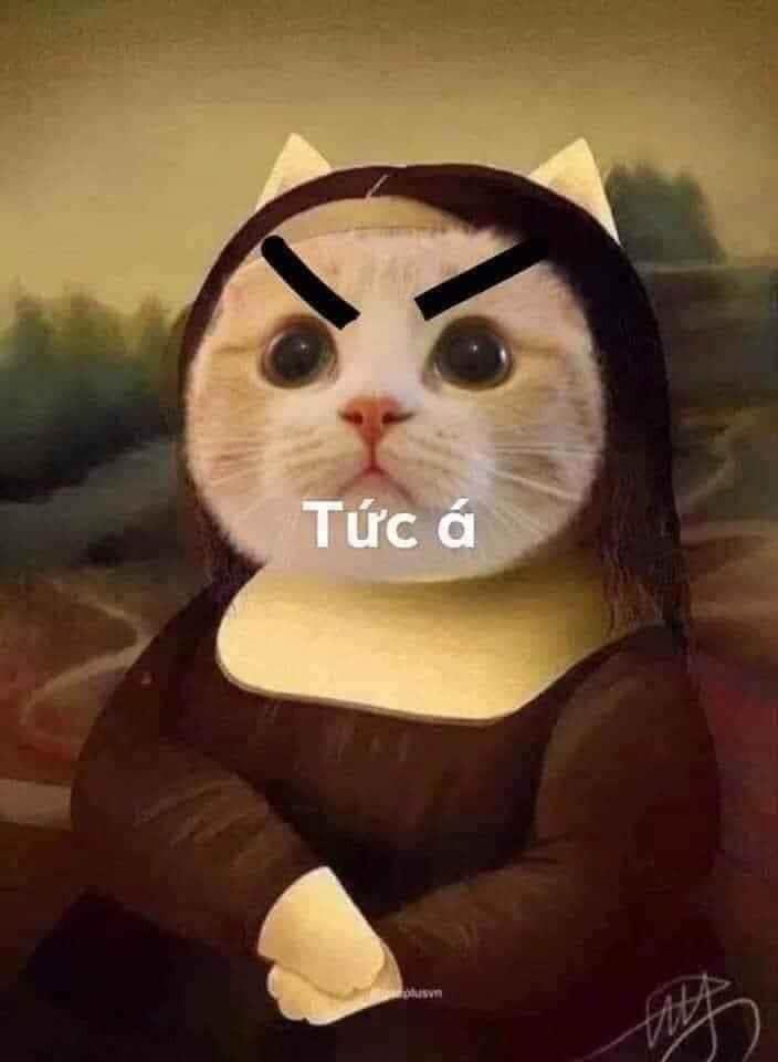 Tức á - Mèo Mona Lisa