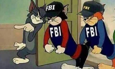 Mèo Tom dẫn 2 cảnh sát FBI vào nhà