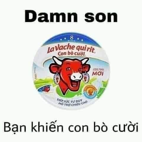 Damn son, bạn đã khiến con bò cười