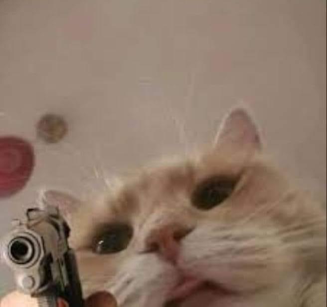 Mèo cầm súng ngắn chĩa vào camera