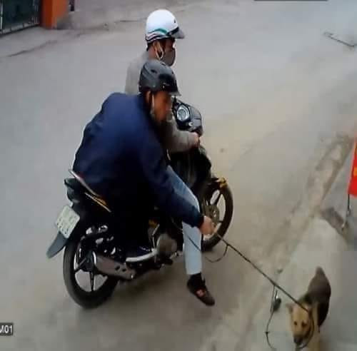 Meme 2 người đàn ông đi xe máy bắt trộm chó