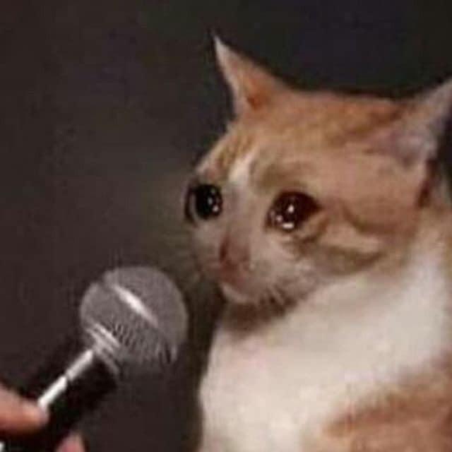 Mèo khóc ướt mắt khi được đưa mic phỏng vấn