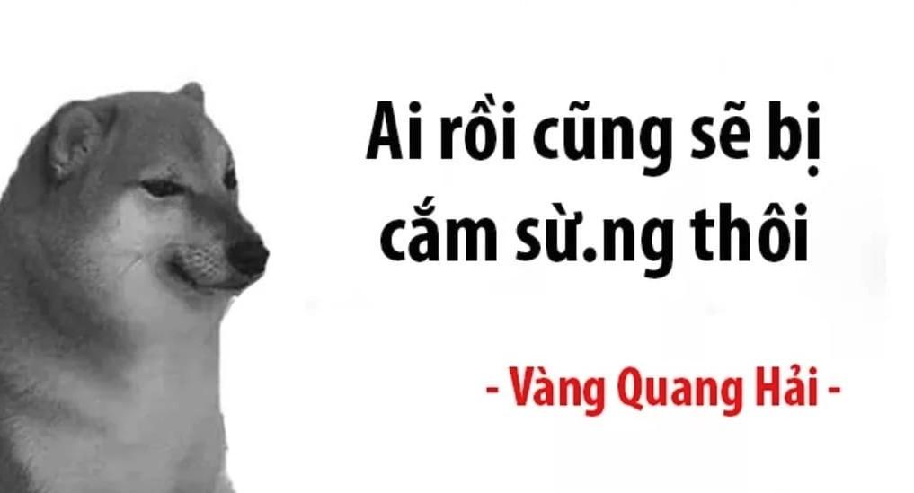 Ai rồi cũng sẽ bị cắm sừng thôi - Cheems Quang Hải
