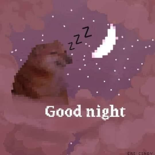 Cheems nói good night chúc ngủ ngon