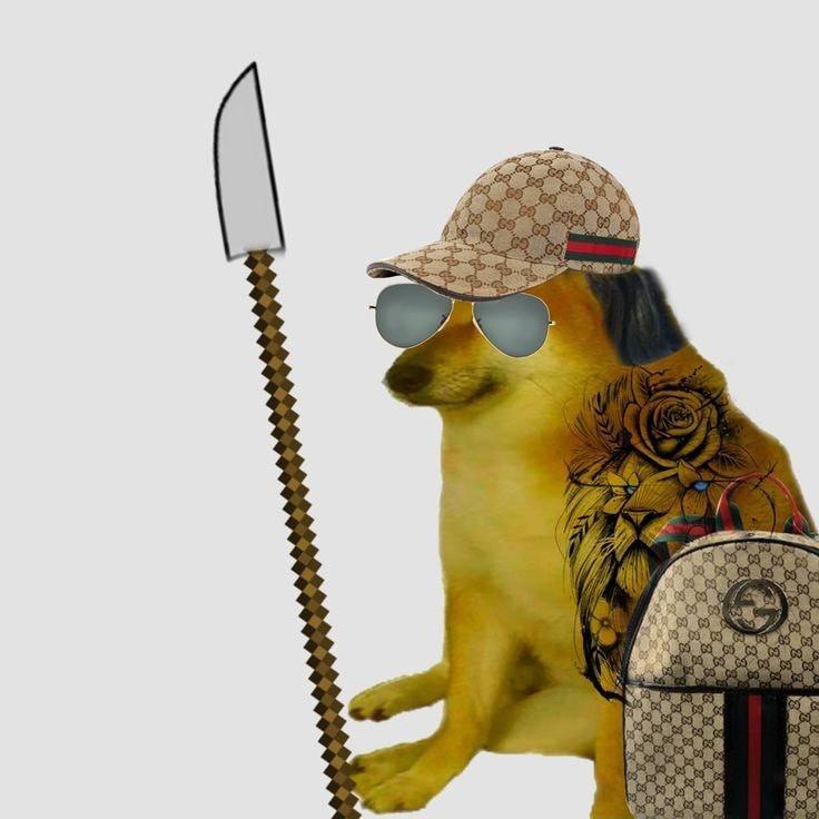 Cheem xăm mình đội mũ và túi hàng fake cầm phóng lợn