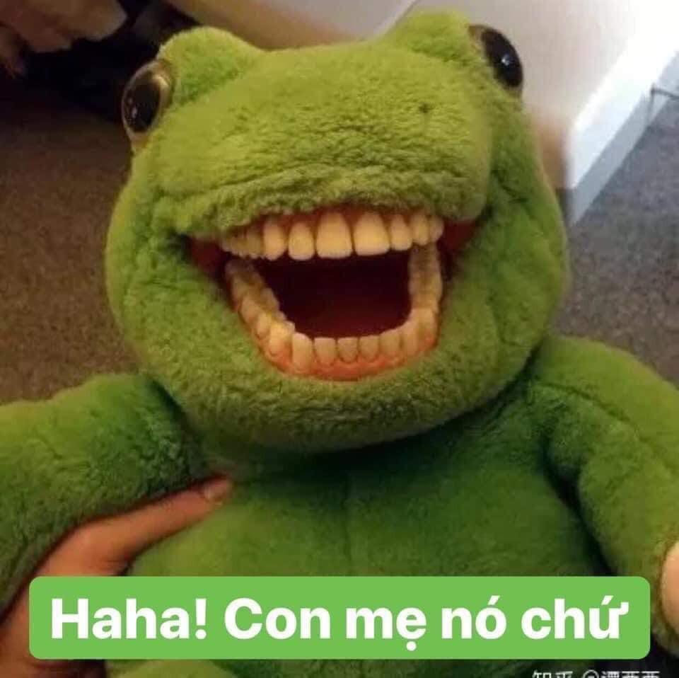 Cá sấu nhồi bông màu xanh cười nhe răng: haha con mẹ nó chứ