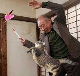 Cụ Tokuda chơi với mèo