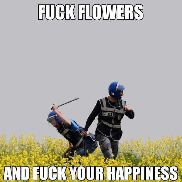 Fuck flowers and fuck your happiness